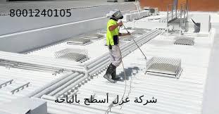 شركة عزل أسطح بالباحة
