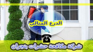 Photo of شركة رش مبيدات بنجران 0114211118