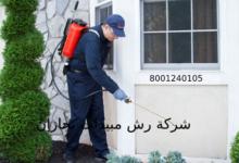 Photo of شركة رش مبيدات بجازان 8001240105