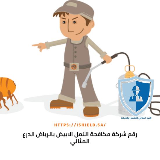 شركة مكافحة النمل الابيض بالرياض - 920008956 - شركة الدرع ...