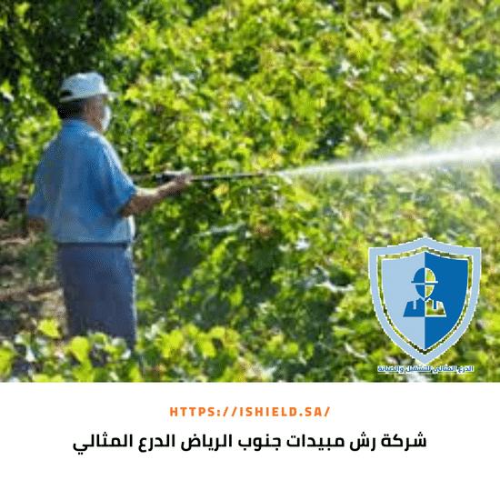 شركة رش مبيدات جنوب الرياض