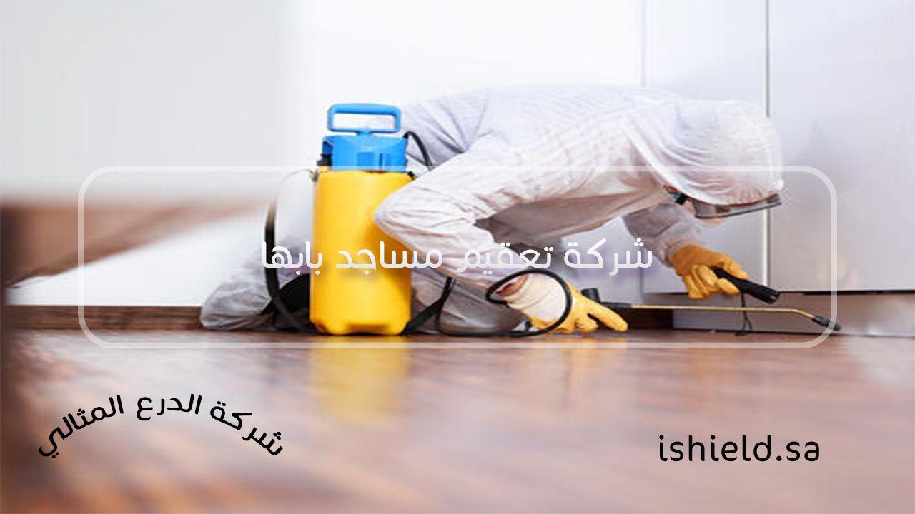 شركة تعقيم مساجد بابها
